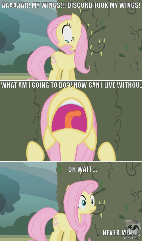 Fluttershy problems
