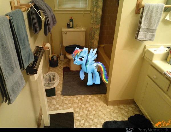 Rainbow w WC