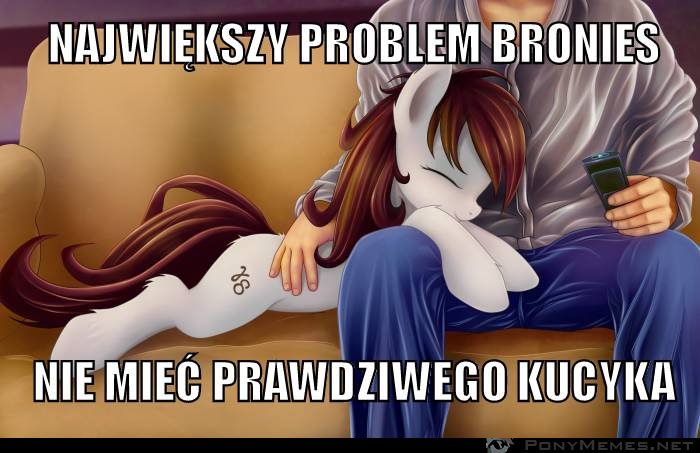 Brony problem