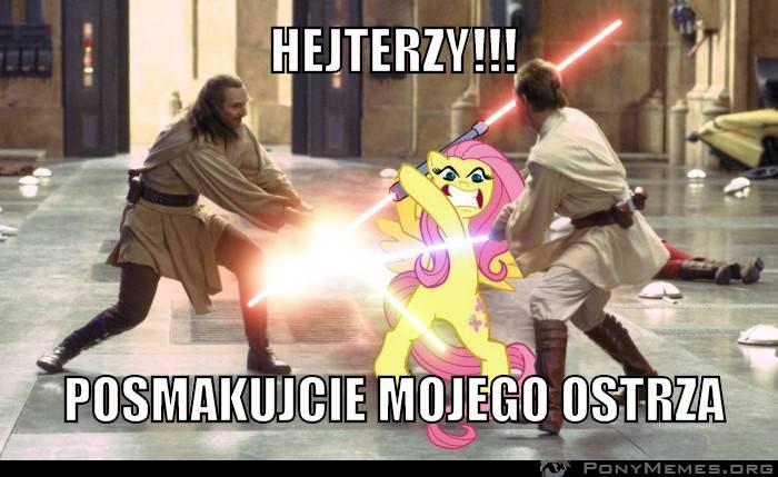 Hejterzy !!!