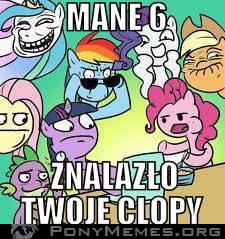clopy