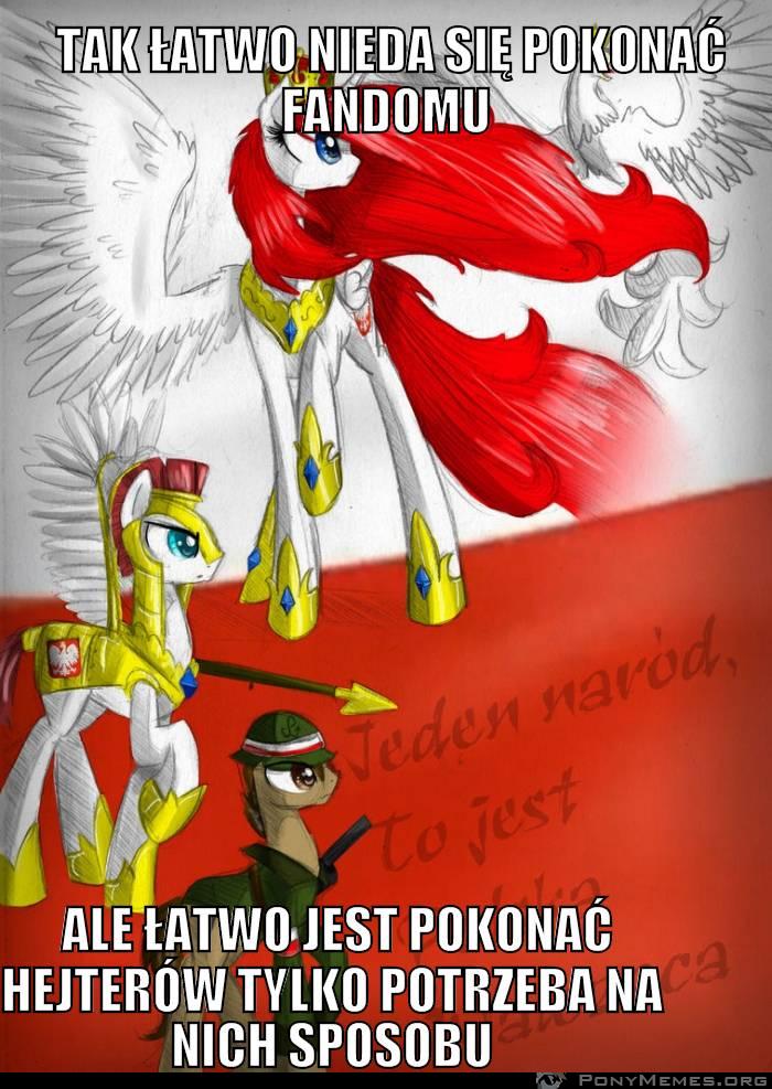 Polska walczy z hejterami