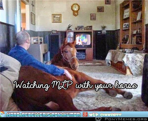 Ogląda MLP razem z koniem