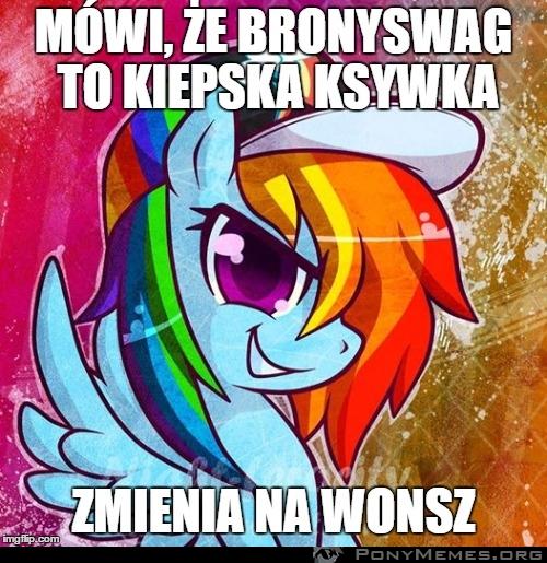 Bronyswag/Wonsz - logika