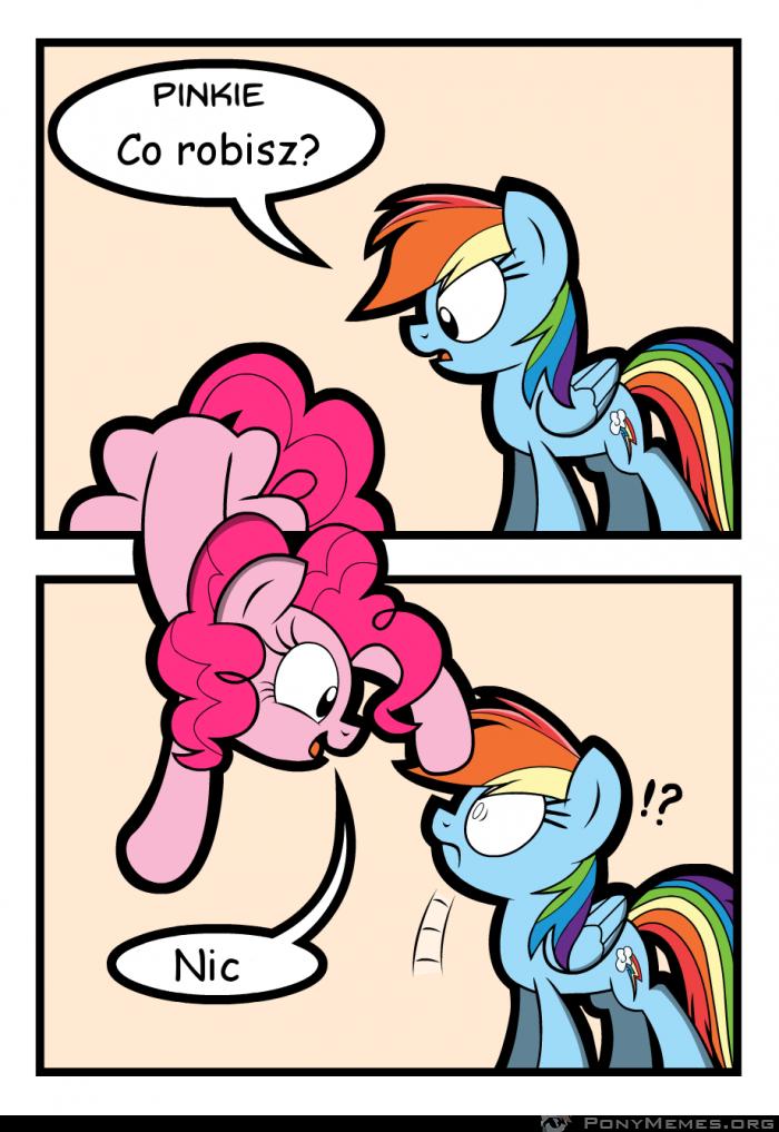 Typowa Pinkie Pie