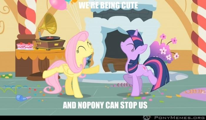 Nopony ! :D