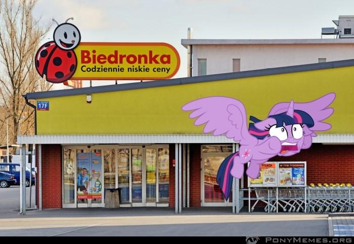 Twilight nie lubi Biedronki